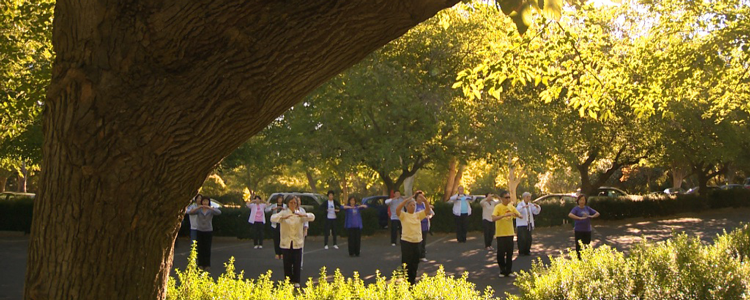Tai - Chi in the park, an option worth considering when aiming to improve wellbeing