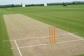 Aggrieved Tuck Shop worker attacks school caretaker and vandalises cricket pitch