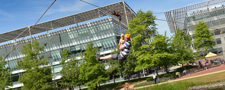 A zip wire strung across the park for employees seeking an adrenaline rush